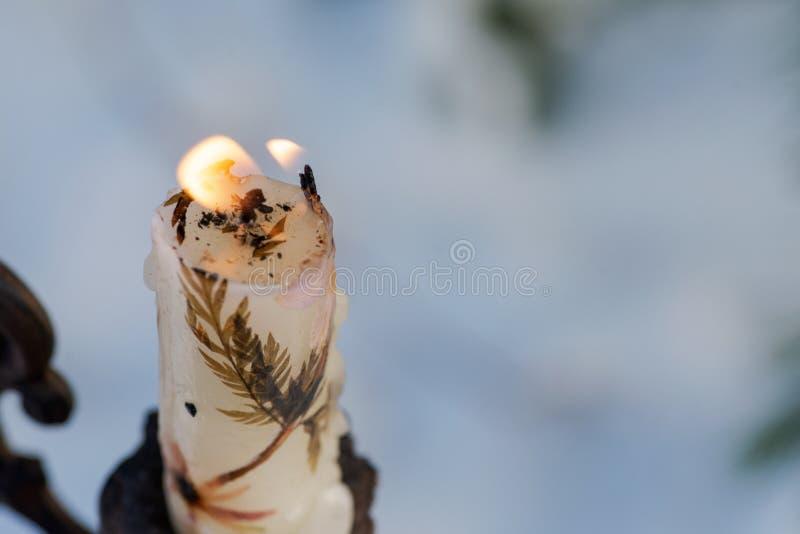 Concetto della decorazione di vacanza invernale: candela bruciante della cera d'api vicino ai pini innevati congelati nella prero fotografia stock