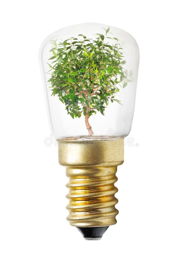 Concetto della lampadina fotografia stock