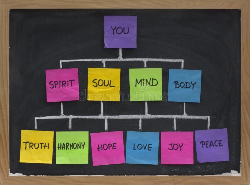 Concetto della rete di zen per vita nell'armonia immagini stock