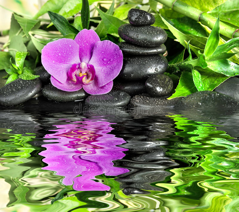 Concetto della stazione termale con le pietre di zen, il fiore dell'orchidea ed il bambù riflessi fotografia stock