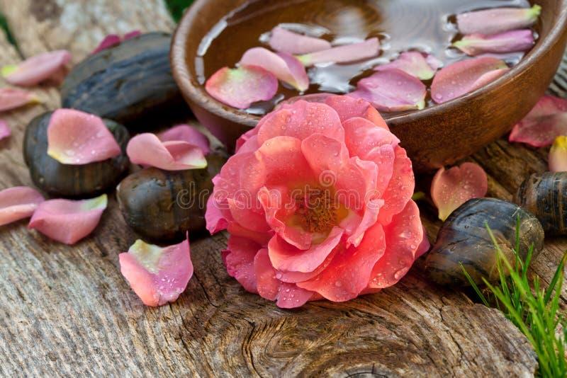 Concetto della stazione termale. fiore rosa con i ciottoli di zen fotografie stock