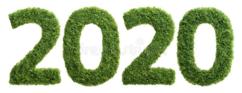 concetto di anno di ecologia dell'erba verde 2020 isolato fotografia stock