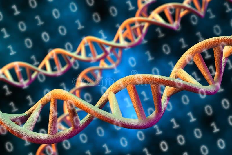 Concetto di archiviazione di dati del DNA Digital, rappresentazione 3D fotografia stock