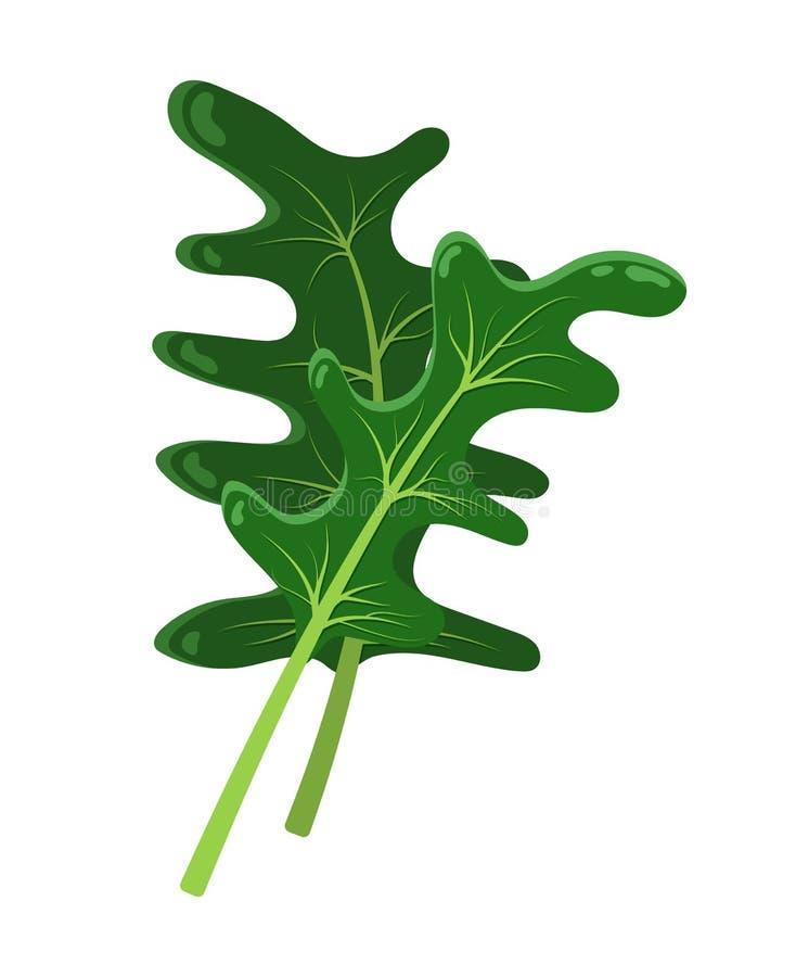 Concetto di Cartton della rucola pianta, icona di vettore illustrazione vettoriale