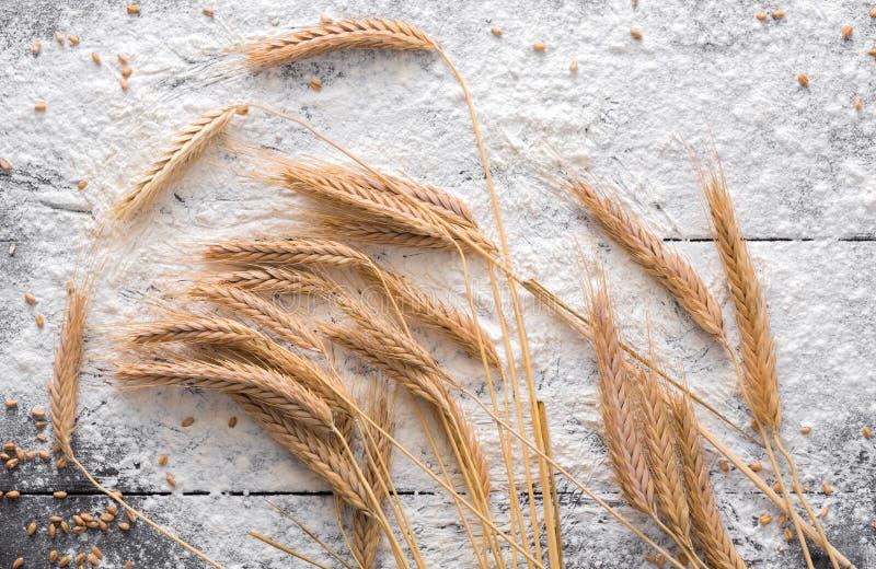Concetto di cottura su fondo di legno, farina spruzzata con le orecchie del grano fotografia stock libera da diritti