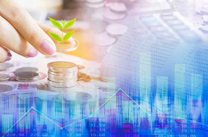 concetto di crescita di affari con la moneta della tenuta della mano con l'albero crescente, calcolatore, grafico finanziario immagini stock libere da diritti