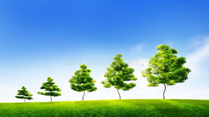 Concetto di crescita sostenibile nell'affare o nel conse ambientale fotografia stock