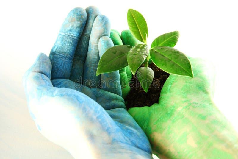 Concetto Di Eco Fotografie Stock