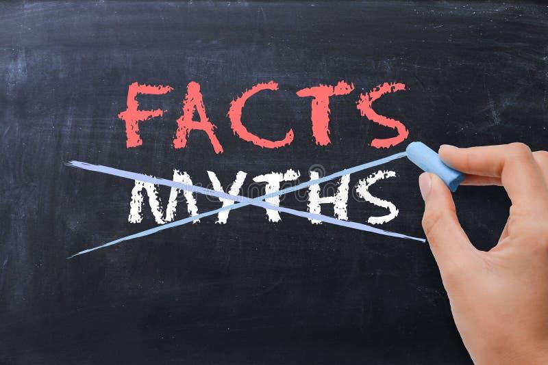 Concetto di fatti o di miti con la mano della donna di affari che attinge lavagna immagine stock