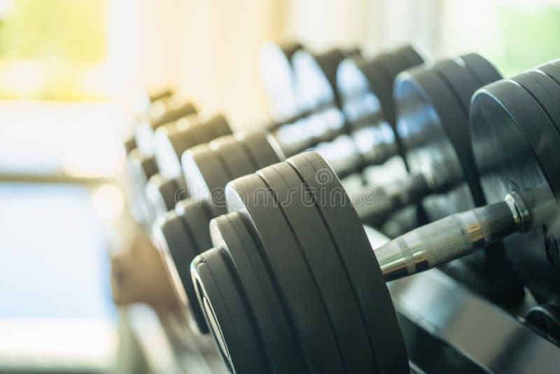 Concetto di forma fisica e di sport File delle teste di legno del metallo sullo scaffale nella palestra/club di sport con lo spaz fotografia stock