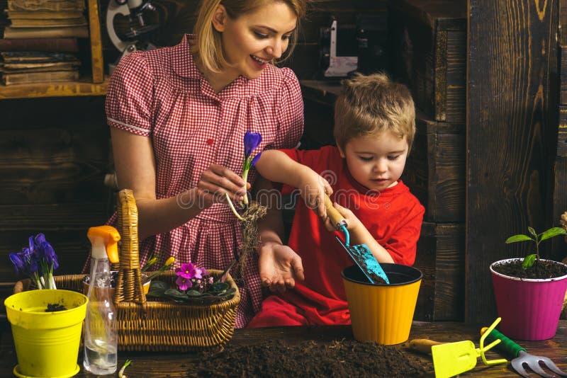 Concetto di giardinaggio Madre di aiuto del piccolo bambino che pianta fiore in vaso con lo strumento di giardinaggio Giardinaggi immagine stock libera da diritti