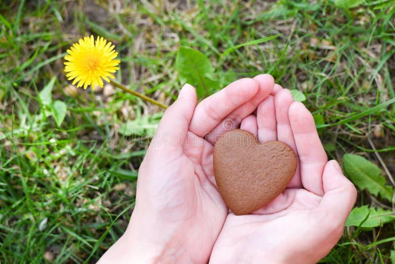 Concetto di giorno del ` s del biglietto di S. Valentino e di amore mano maschio nella forma di cuore sul fondo del campo di erba fotografie stock