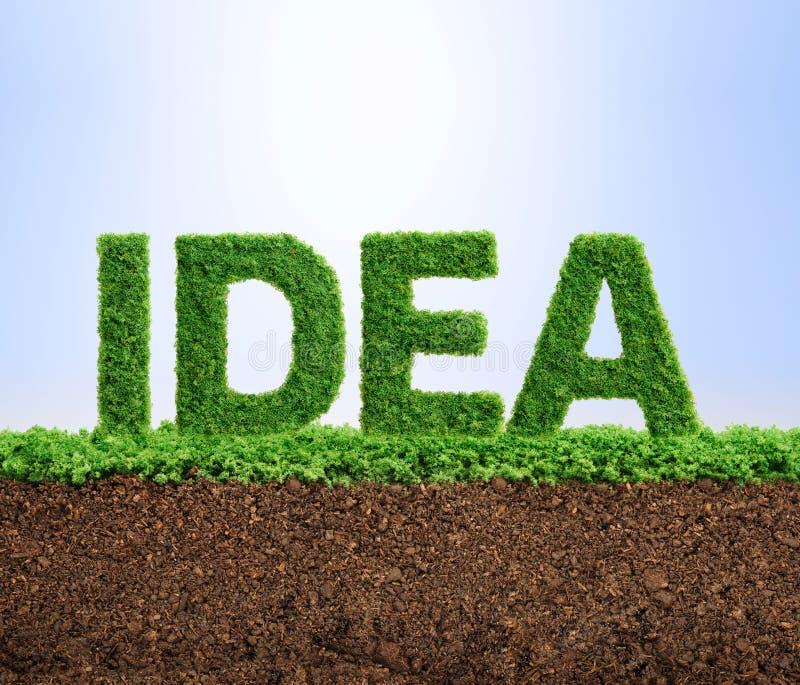 Concetto di idea di crescita dell'erba fotografia stock libera da diritti