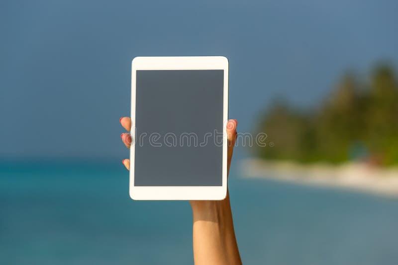 Concetto di Internet e della comunicazione comput vuoto in bianco della compressa immagini stock libere da diritti