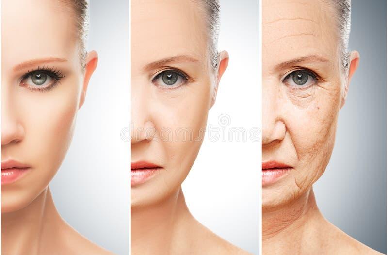 Concetto di invecchiamento e di cura di pelle fotografia stock libera da diritti