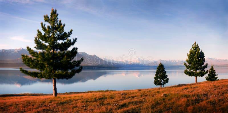 Concetto di Matheson Island New Zealand Landscape del lago immagine stock