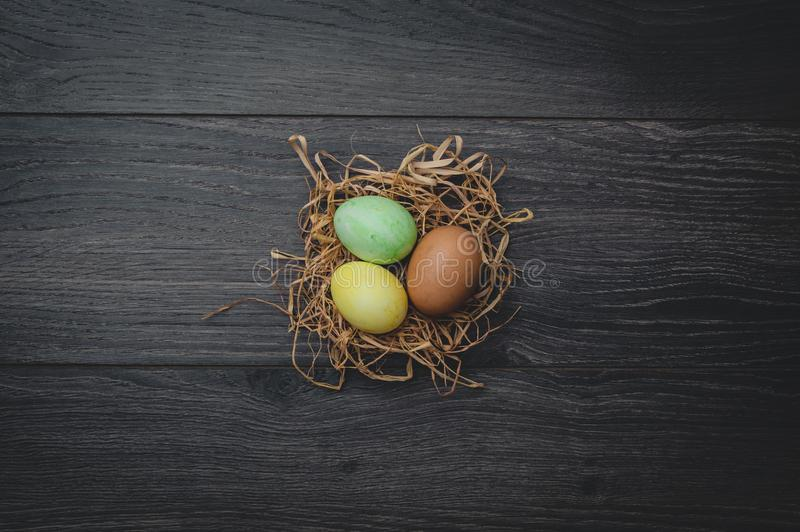 Concetto di Pasqua: uova dipinte in nido fotografia stock libera da diritti