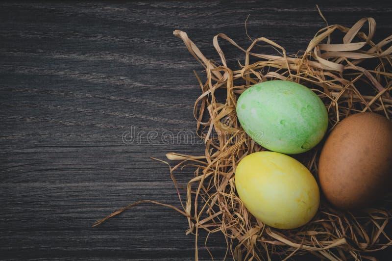 Concetto di Pasqua: uova dipinte in nido immagini stock