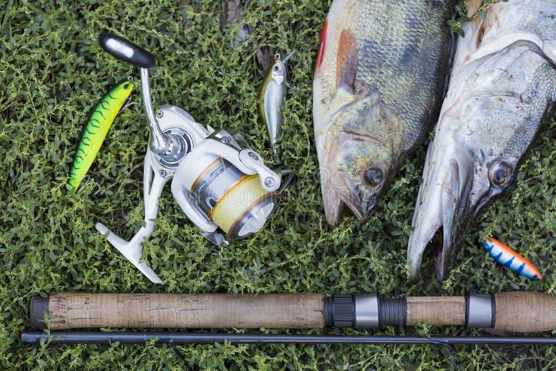 Concetto di pesca con la barretta di filatura, la bobina, il pesce ed i richiami su erba verde immagine stock