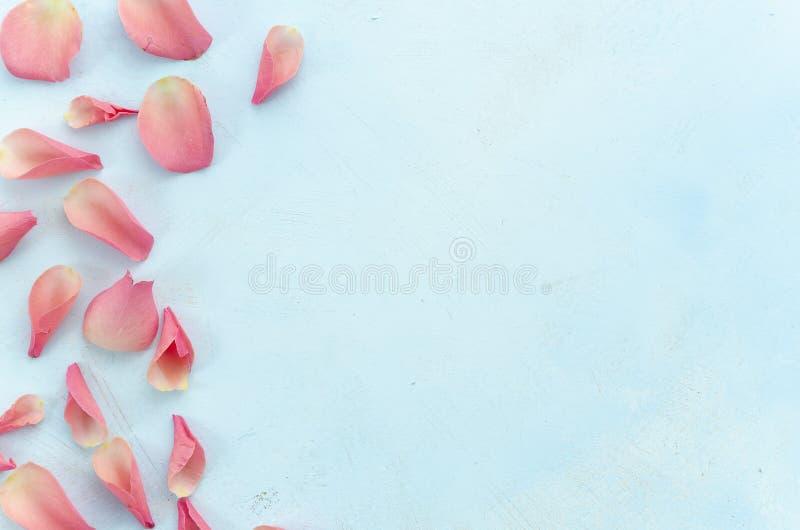 Concetto di procedure del salone e della stazione termale di bellezza della donna con la vista superiore rosa dei petali rosa a f fotografia stock