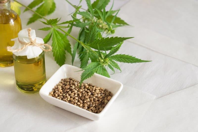 Concetto di prodotti della canapa Olio di semi della cannabis e pianta verde fotografia stock libera da diritti