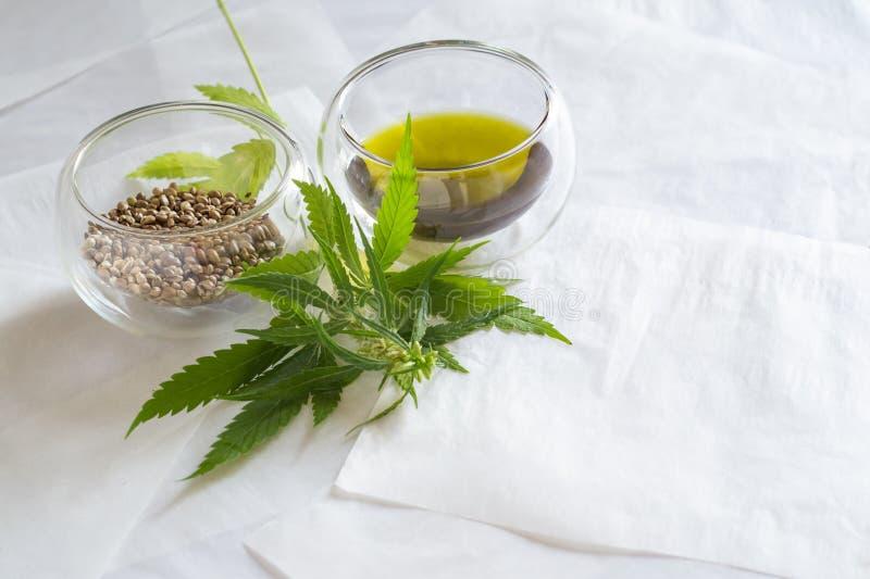 Concetto di prodotti della canapa Olio di semi della cannabis e pianta verde fotografie stock libere da diritti