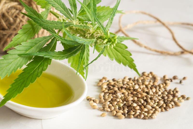 Concetto di prodotti della canapa Olio di semi della cannabis, matassa e pianta verde immagine stock libera da diritti