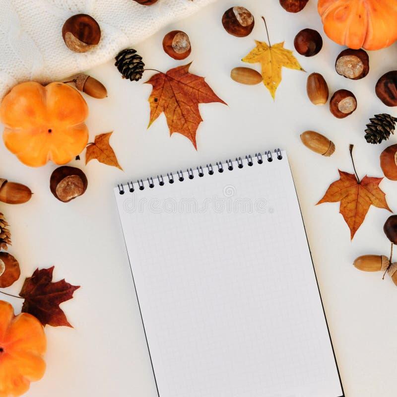 Concetto di stagione di autunno Fondo accogliente di autunno per la scrittura su uno strato in bianco del taccuino su un fondo bi fotografia stock