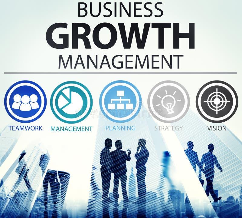 Concetto di successo di missione della gestione di strategia aziendale illustrazione vettoriale