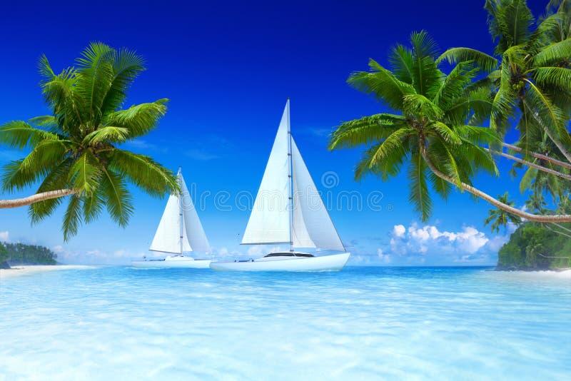 Concetto di vacanze estive della palma della spiaggia delle barche a vela fotografie stock libere da diritti