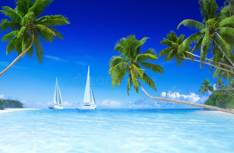 Concetto di vacanze estive della palma della spiaggia delle barche a vela fotografia stock