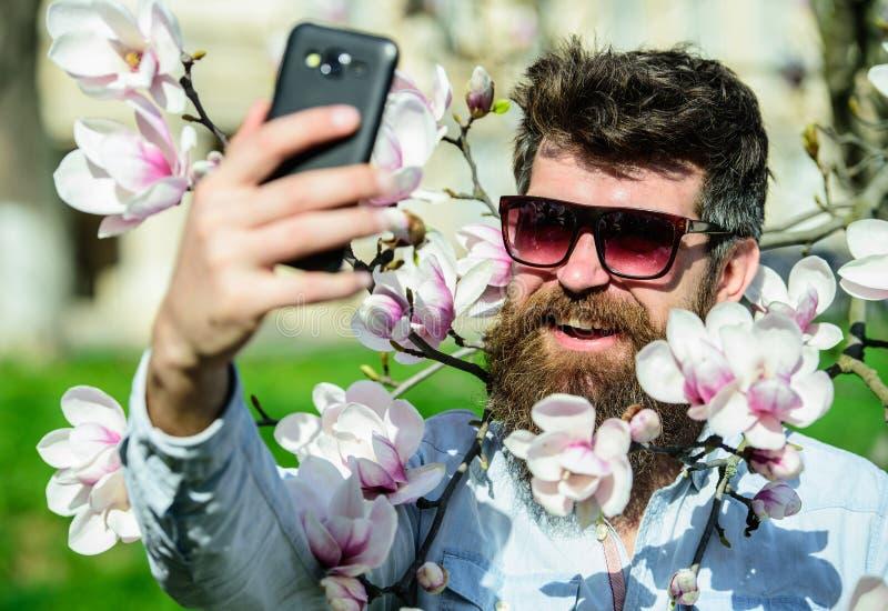 Concetto di Vlogging L'uomo con la barba ed i baffi indossa gli occhiali da sole il giorno soleggiato, fiori della magnolia su fo fotografia stock libera da diritti
