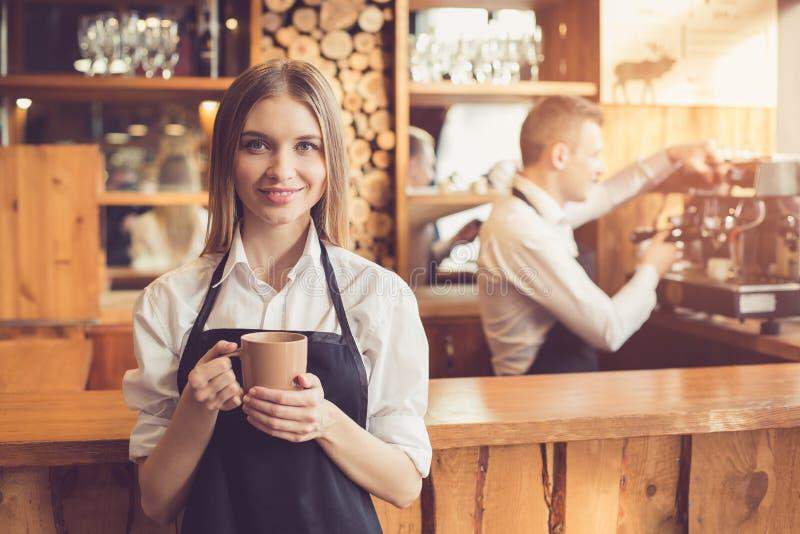 Concetto per il barista professionale in caffetteria fotografia stock
