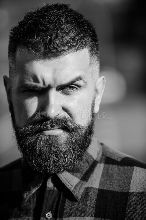 Concetto soleggiato dello smorfia Uomo con il fronte rigoroso e barba in camicia di plaid immagini stock