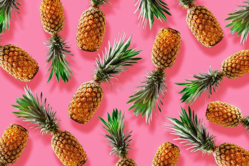 Concetto tropicale di stile di retro progettazione Modello con il pineapp dei pantaloni a vita bassa fotografia stock