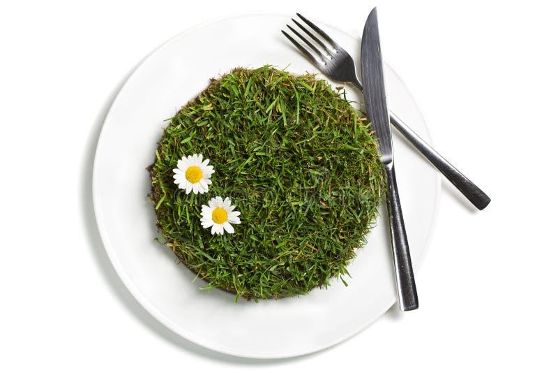 Concetto vegetariano dell'alimento immagini stock libere da diritti