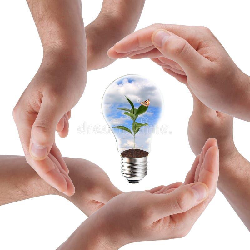 Concetto verde di energia fotografie stock