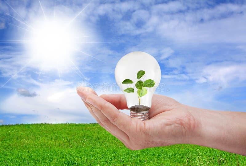 Concetto verde di energia immagini stock libere da diritti