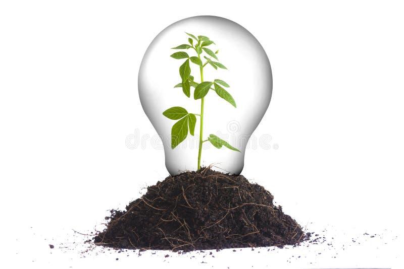 Concetto verde II di energia immagine stock libera da diritti
