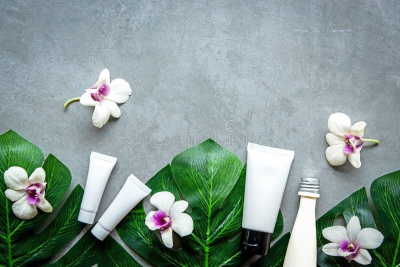 Concetto verde organico dei prodotti cosmetici della stazione termale, massaggio della stazione termale bello sulla vista superio immagini stock libere da diritti