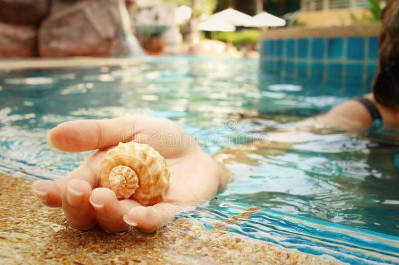 Conch in hand of woman at swimming pool. stock photo