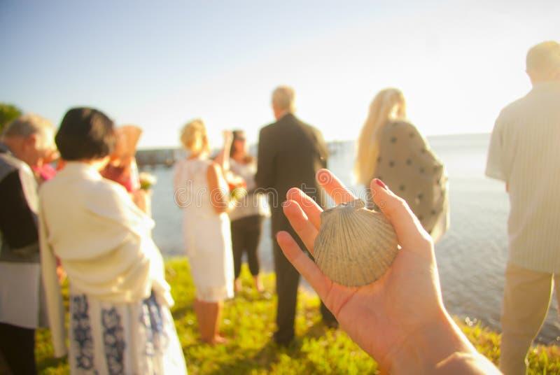 Concha do mar romântica do banquete de casamento de Florida fotografia de stock