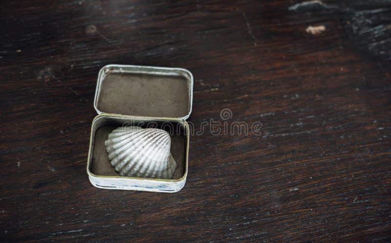 Concha en la pequeña caja en la tabla de madera marrón vieja fotografía de archivo
