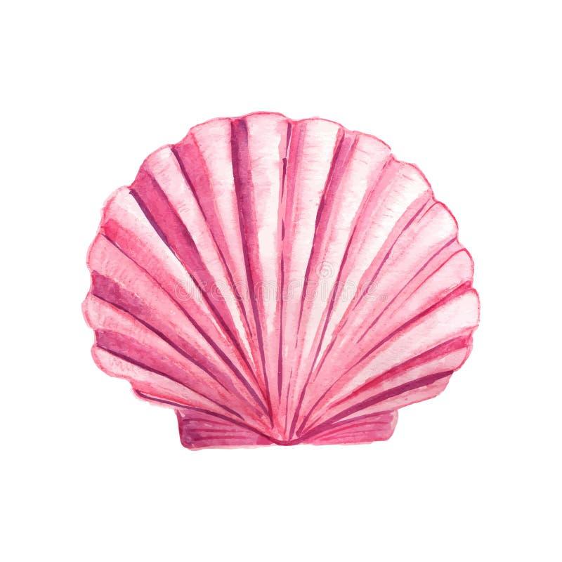 Concha marina de la acuarela stock de ilustración