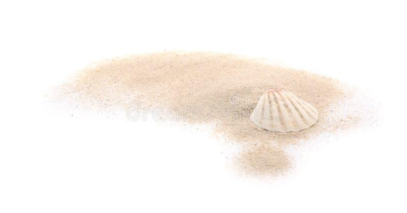 Concha marina y arena en el fondo blanco imágenes de archivo libres de regalías