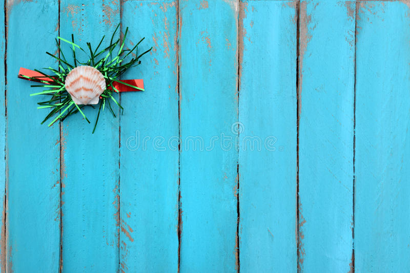 Concha marina y malla en la madera resistida fotos de archivo