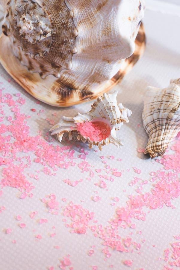 Conchas do mar bonitas de tamanhos diferentes e de sal de banho imagens de stock royalty free