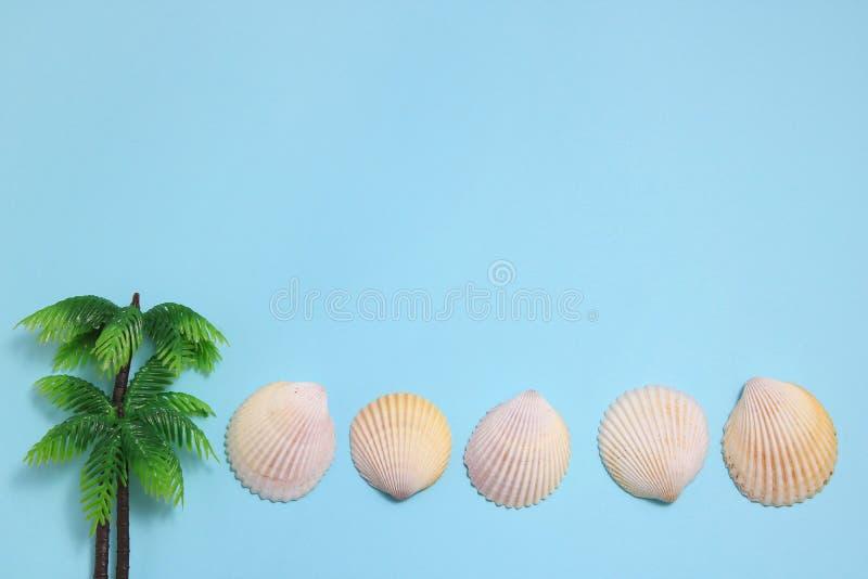Conchas do mar brancas no fundo azul imagem de stock
