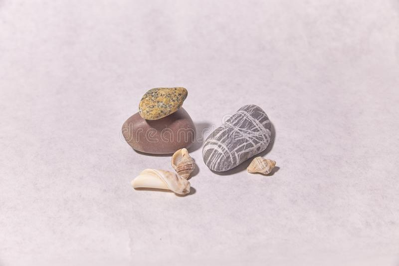 Conchas do mar e pedras em uma superfície branca fotografia de stock royalty free