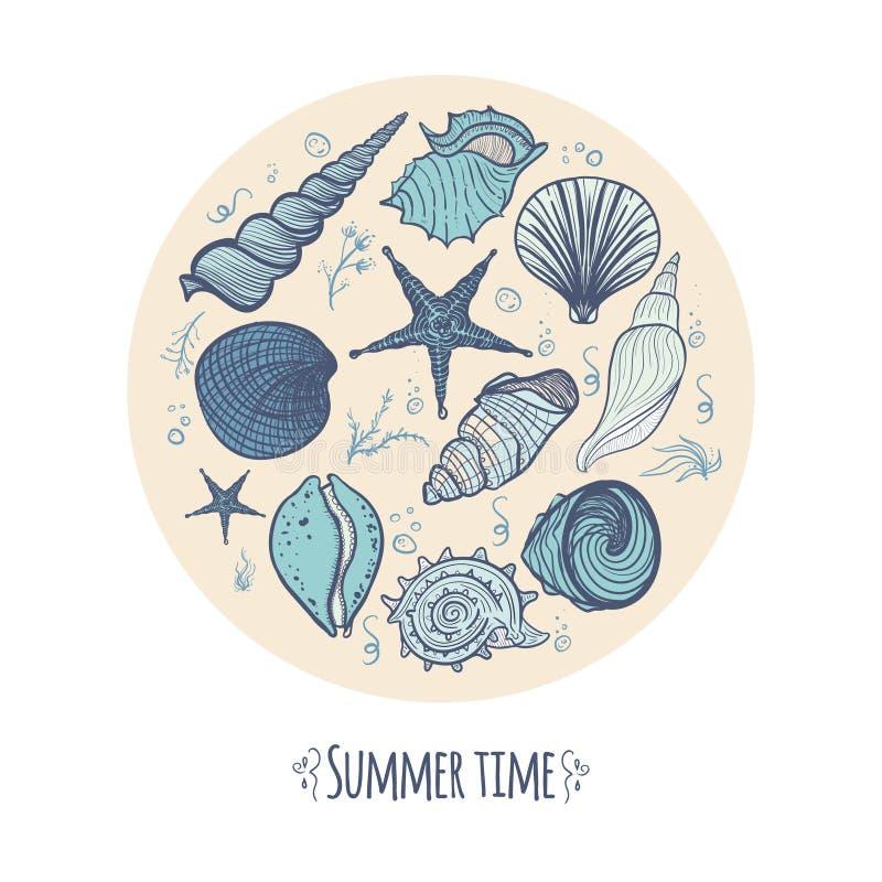 Conchas do mar, estrela do mar, alga e coral tirados mão da garatuja ilustração stock